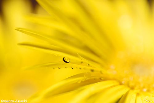 140914_home_007