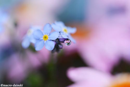 150301_kyoto_492