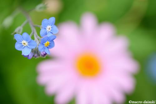 150301_kyoto_655