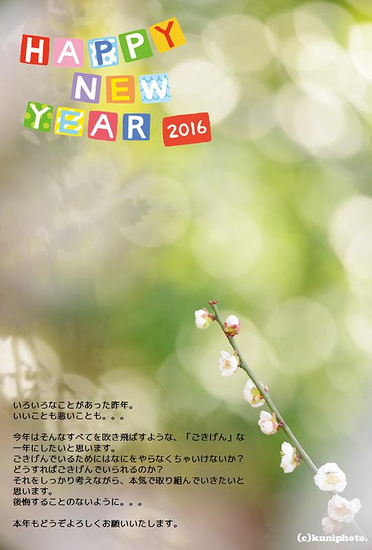 デザイン_2016_ブログ用