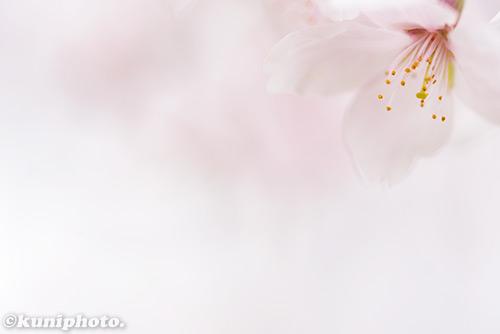 0404_160403_tsurumi_065