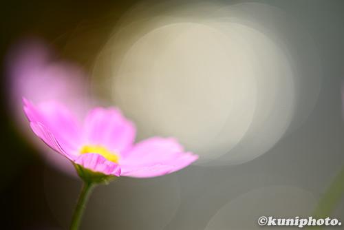 151004_kyoto_160s