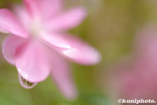 170622_kyoto_045