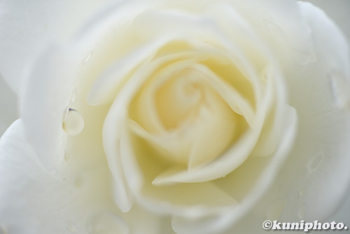 171020_aramaki_227