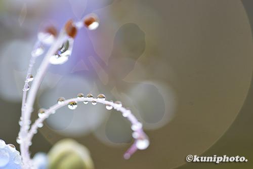 180921_kyoto_141