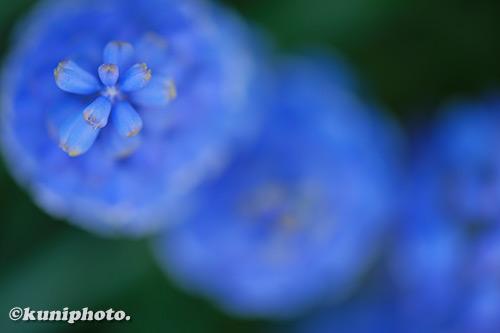 190309_kyoto_056_XT3