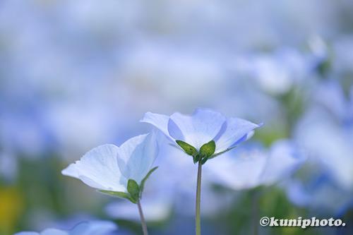 190421_tsurumi_137_XT3