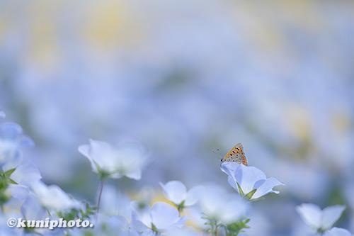 190421_tsurumi_169_XT3_140
