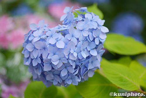 0525_180613_maishima_081
