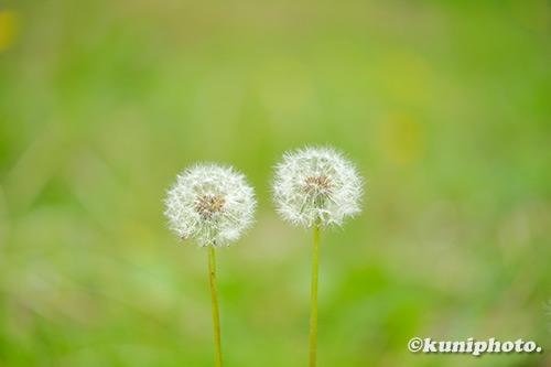 190503_hattori_207_XT3