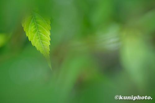 190702_nagai_0227_XT3