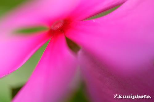 190904_tsurumi_295_XT3