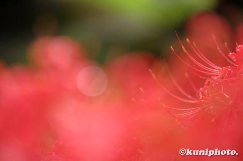 200926_banpaku_648_XH1