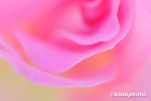 201020_aramaki_033_XH1
