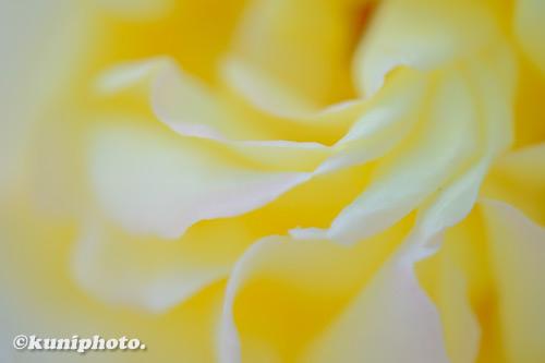 201027_banpaku_383_XH1