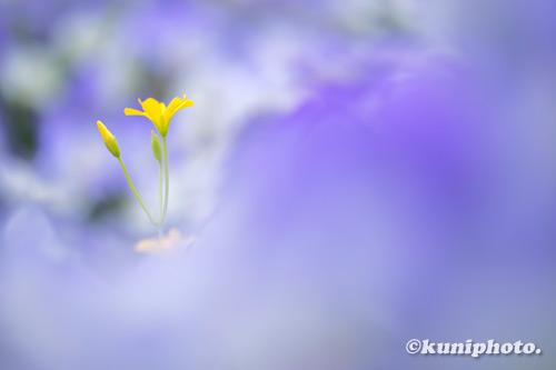 210508_tsurumi_017_XH1