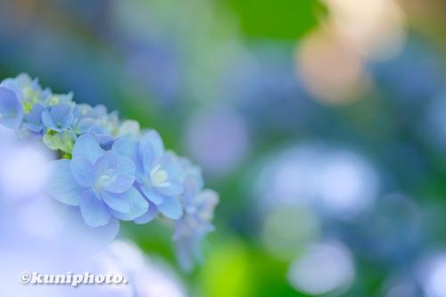 210609_maishima_286_XT3